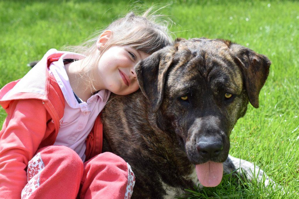 la relación del niño con el perro