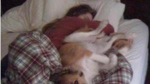 Dormir con nuestro perro nos aporta multitud de beneficios